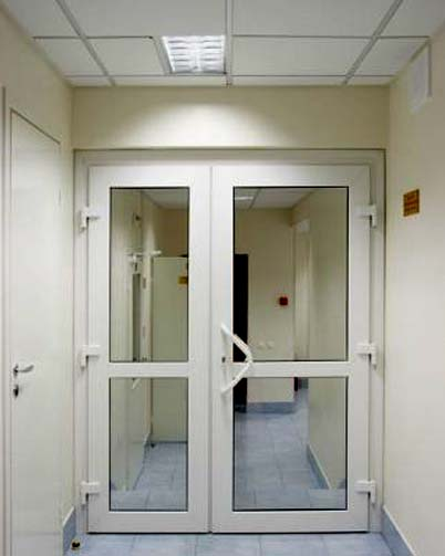 пвх дверь двухстворчатая (фото)
